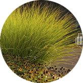 round-activeharvesting