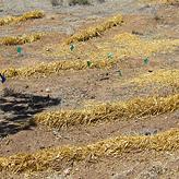 round-activeharvesting3