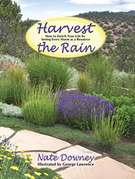 Cover image of Harvest The Rain book by Nate Downey